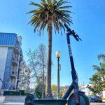 【Bird】LAでの移動は電動ライドシェアキックボードスクーターが便利!